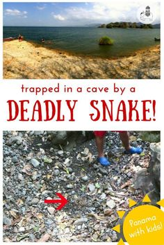 Panama with Kids: Trapped in a cave by a deadly snake! When exploring the caves at Lake Bayano we became separated from some of the children by an 'equis' – one the most dangerous snakes in Panama! Find out what happened here.... (Blog post includes video footage)