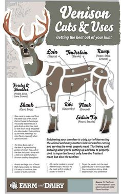 Venison Cuts and Uses: Getting the best out of your hunt