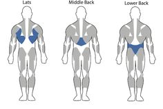 Back Exercises for Men
