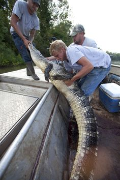 swamp people cast | SWAMP PEOPLE | HISTORY India TV Channel Official Site