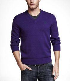 Express - Bold Violet V-neck Sweater