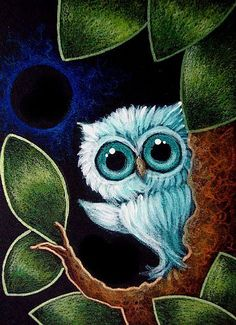 Google Image Result for http://www.ebsqart.com/Art/Gallery/Media-Style/721919/650/650/TINY-AQUA-OWL-ECLIPSE-2.jpg