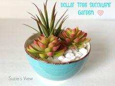 My five minute dollar tree succulent garden!