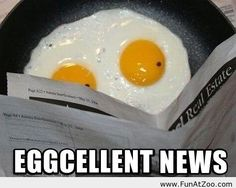 Funny morning eggs picture - Funny Picture