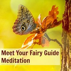 Guided audio meditation for meeting your fairy guide by Sarah Petruno, Shamana