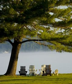 Muskoka Chairs (by stumblintrucker) - I would love to have a house on the lake and then sit by the water and watch the world go by