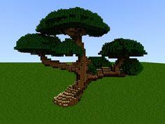 bonsai trees - Google Search