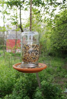 mason jar bird feeder.