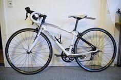 Leichtes, kleines 28 Zoll Rennrad mit Carbon Gabel in RH44 - Geometrie besonders geeignet für...,Specialized Rennrad Dolce Comp X3 Ultegra Frauen / U13 / U15 in Hamburg - Hamburg St. Pauli