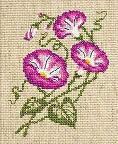 Morning Glory Cross Stitch Kit By Riolis