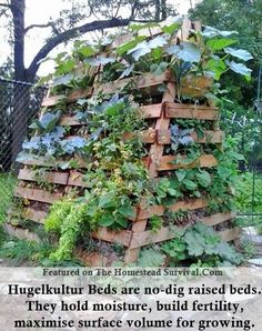 a frame. permaculture method that uses of a base of rotti., Hugelkultur tower with a frame. permaculture method that uses of a base of rotti., Hugelkultur tower with a frame. permaculture method that uses of a base of rotti., The Homestead Survival Building Raised Garden Beds, Raised Beds, Permaculture Garden, Permaculture Design, Homestead Survival, Plantation, Edible Garden, Garden Planning, Small Gardens