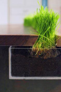 Finden Sie die richtigen Möbel für pflegeleichte Haustiere - http://freshideen.com/wohnideen/pflegeleichte-haustiere.html