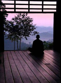 zen in wonderland
