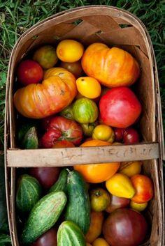 Heirloom tomatoes.