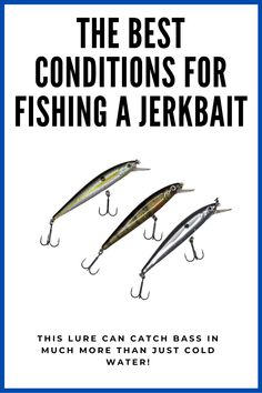 This article will go over some prime situations where a jerkbait is an angler's best option. #bassfishing #jerkbaitfishing Fishing Hook Knots, Bass Fishing Lures, Bass Fishing Tips, Walleye Fishing, Fishing Life, Fishing Humor, Fishing Stuff, Fly Fishing, Funny Fishing Pictures