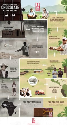Fair Trade Chocolate Infographic