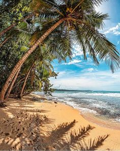 Amazing Destinations, Travel Destinations, Travel Europe, Italy Travel, Cost Rica, Singles Holidays, Single Travel, Costa Rica Travel, Travel Alone