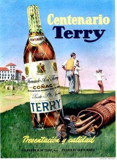 Centenario Terry