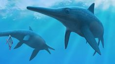 A dramatic shift in the Earth's climate killed off marine reptiles that swam at the time of the dinosaurs, according to a new study.