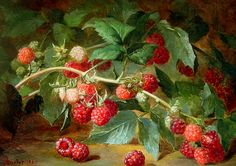 stilllifequickheart:Eugène Alexandre Bulot -Raspberry Bush  1867