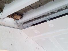 Revestimientos  Montaje de placas de falso techo de cartón yeso.