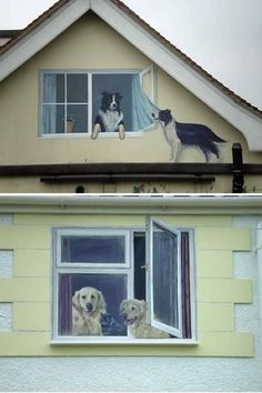Interesting paintings on the facade of a house creating the illusion of windows with animals.