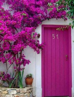 Beautiful pink door with bougainvillea in Alonissos, Greece The Doors, Windows And Doors, Entry Doors, Beautiful Flowers, Beautiful Places, Beautiful Gorgeous, Beautiful Front Doors, Unique Doors, Simply Beautiful