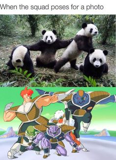 Pandas are the new ginyu force