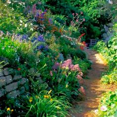I'd love to have a yard big enough for this lovely path.