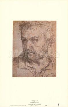 Andrea Del Sarto Drawings | Young Man by Andrea Del Sarto art print