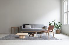 Linea sofa, April table, December Lounge and January table Sofas, December, Tables, Lounge, Furniture, Design, Home Decor, Couches, Mesas