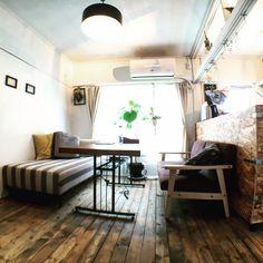makotottoさんの、部屋全体,観葉植物,照明,IKEA,ソファ,DIY,アクタス,リノベーション,セルフリノベーション,のお部屋写真
