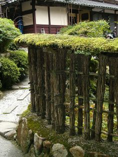 Jakko-in Temple in the little town of Ōhara in Kyōto Prefecture, Japan Mossy fence