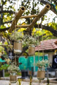 Marvels Of Nature To Adorn The Reception