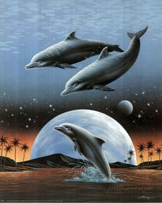 Dolphins Jumping In Moonlight Art Print POSTER