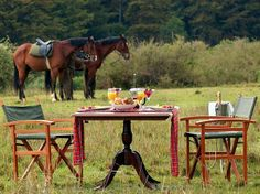24.Fairmont Mt. Kenya Safari Club : Best Resorts & Safari Camps in Africa: Readers' Choice Awards : Condé Nast Traveler