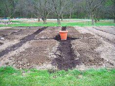 How to start a new garden.