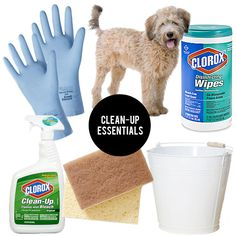 theeverygirl_clorox_clean-up