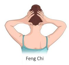 Feng Chi Acupressure Point