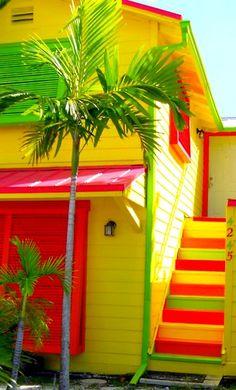 Neon dream house
