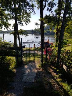 Zugang zum See Sidewalk, Country Roads, Plants, Bike Trails, Bike Rides, Campsite, Side Walkway, Walkway, Plant