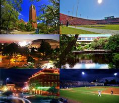 Gainesville, Florida  Home of the Florida Gators