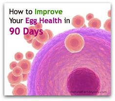 Fertility Guide: How to Improve Your Egg Health in 90 Days...