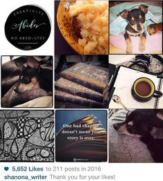 My best nine of 2016!  :: #2016bestnine #mybestnine #bestpics #instagram #instafun #instadaily #quotes #quotestagram #chihuahua #chihuahuasofinstagram #chihuahua #ilovemydog #dogs #dogstagram #zentangle #zentangledrawing #drawing #art #books #bookstagram #coffee #amwriting #writersofinstagram #writer #bakedpotato #foodporn #food #foodstagram #creativity xox