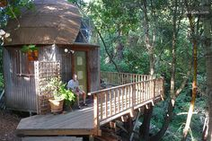 Tiny mushroom dome cabin in forest near Santa Cruz, CA, available for nightly rental. The inside is just as sweet as the outside.