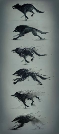 Hunger is a monster by Platine Images Wolf Sketch / Drawing Animation Illustration Inspiration Arte Horror, Creature Design, Mythical Creatures, Dark Art, Amazing Art, Fantasy Art, Fantasy Wolf, Dark Fantasy, Cool Art