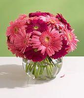 Pink Gerbera Daisy Centerpiece