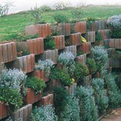 Concrete Blocks, Concrete Wall, Build A Wall, Lush, Garden, Plants, Garten, Lawn And Garden, Gardens