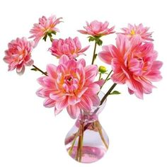 - Flat Flowers Originals Dahlia Pink - Wow your guests with this stunning hot pink dahlia bouquet. The intricate design of this double. Bunch Of Flowers, Pink Flowers, Flower Window, Dahlia Flower, Window Stickers, Geometric Shapes, Plant Hanger, All The Colors, Floral