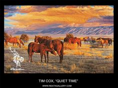 "Tim Cox - ""Quiet Time"""